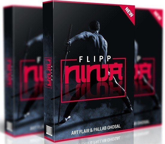 The Flipp Ninja Review